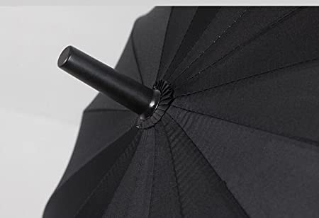 Zabrina Anime japonés paraguas mango de espada Katana estilo paraguas espada funda de transporte de nailon con correa: Amazon.es: Jardín