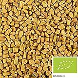 500g di semi di fieno greco bio - fieno greco intero senza additivi