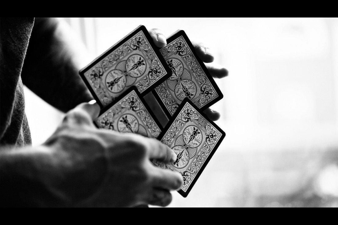 Rot Motiv Bicycle Ellusionist Pip Spielkarten mit schwarzem Tigerdeck Fahrrad PosTTIG