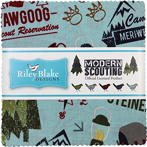 quilting fabric with 5 stars - 9