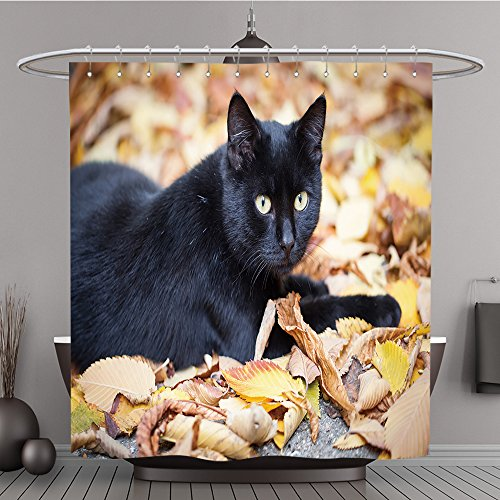 iPrint Shower Curtain 159079865 Black cat in autumn leaves close up photo. Animal portrait Polyester Fabric bath (Rams Portrait Picture Frame)