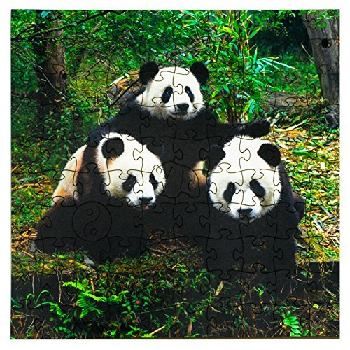 Mosaic Puzzles Wooden Jigsaw Puzzle – Giant Pandas – 103 Unique Pieces Challenge Any Puzzle Lover from Ages 8 to 98 – Made in The USA by Zen Art & Design made in Massachusetts