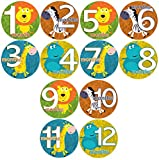 Baby Month Onesie ZOO BUDDIES, Safari Animals Stickers Baby Shower Gift Photo Shower Stickers Baby Photo Onesie Milestone Stickers