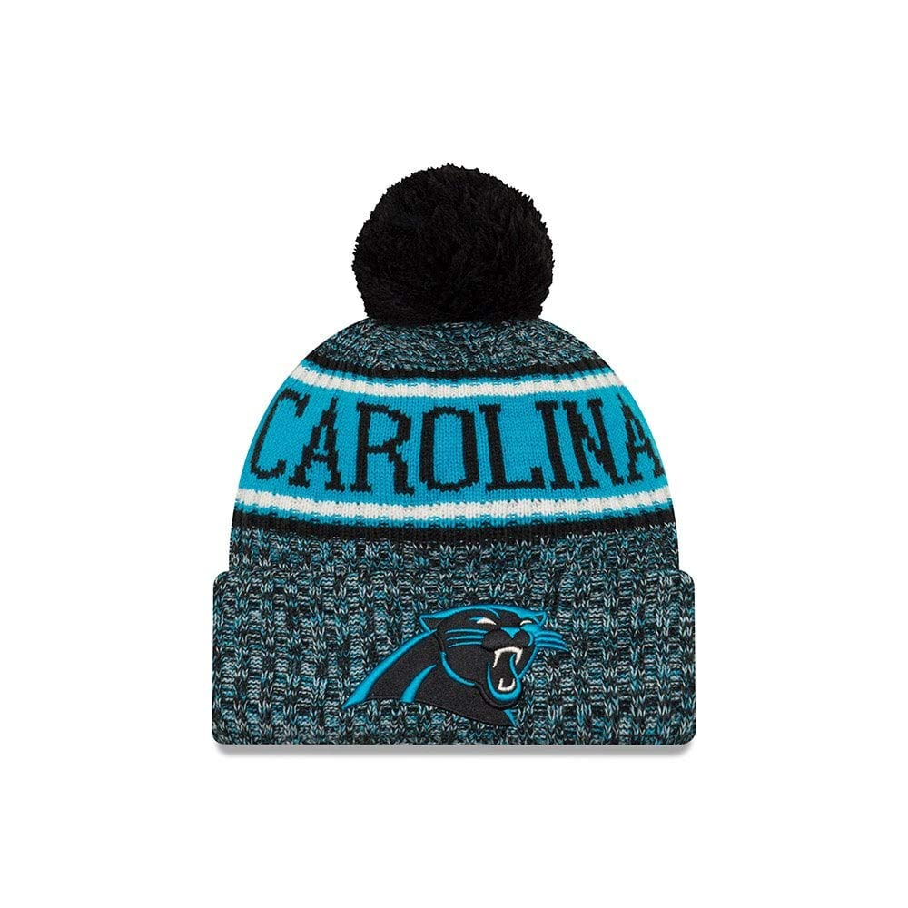 New Era 2018 NFL Carolina Panther Reverse Sport
