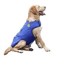 Fansport Dog Jacket Windproof Cotton Waterproof Dog Vest Winter Warm Coat Pet Clothes for Winter Autumn (L, Blue1)