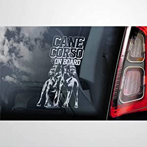BYRON HOYLE Cane Corso Vinyl Car Sticker, Dog in Board Board Decal, Car Accessories, Laptop Decal, Car Decoration, Bumper Stickers for for Windows, Cars, Trucks, Etc.