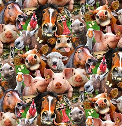 orse Cow Pig Chicken Donkey Goose Turkey Selfies Handcrafted Curtain Valance (Turkey Hog)