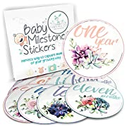 Baby Monthly Stickers - Milestone Month Sticker for Onesie or Scrapbook - 12 Succulents 4  Premium Sticker for Your Boy or Girl First Year Growth - Great Shower Registry Gift for Expecting Mothers