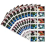 Flowers from the Garden 10 Books of 20 USPS First Class Postage Stamps American Celebrate Beauty
