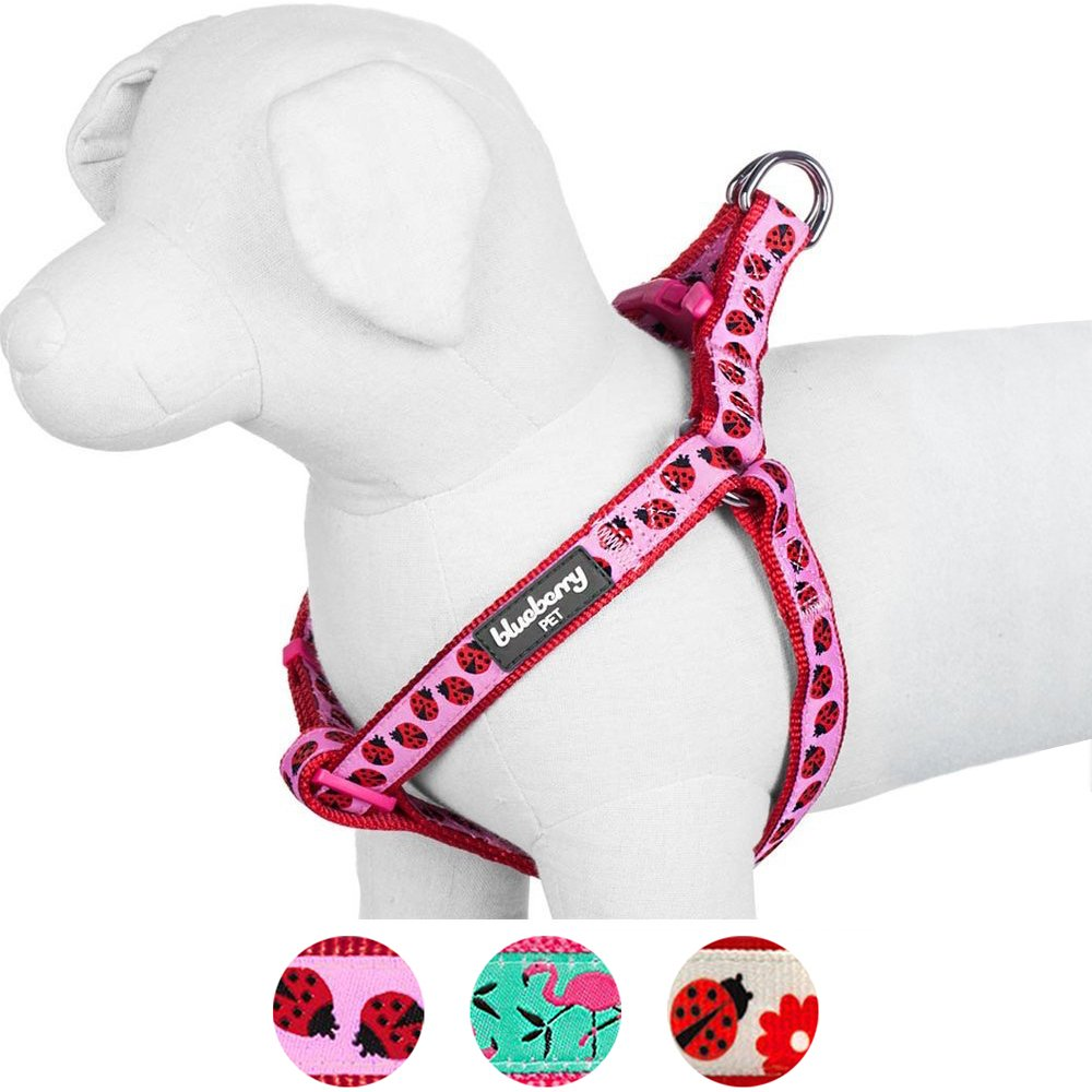 Blueberry Pet Step-in Ladybug Designer Dog Harness, Chest Girth 16.5'' - 21.5'', Small, Adjustable Harnesses for Dogs