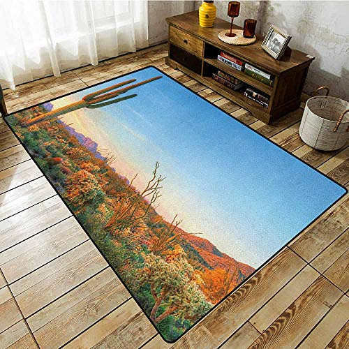 (Living Room Area Rug,Saguaro,Sun Goes Down in Desert Prickly Pear Cactus Southwest Texas National Park,Rustic Home Decor Orange Blue Green)