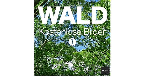 WALD Kostenlose Bilder 1 BEIZ images - Kostenlose Fotos (German ...