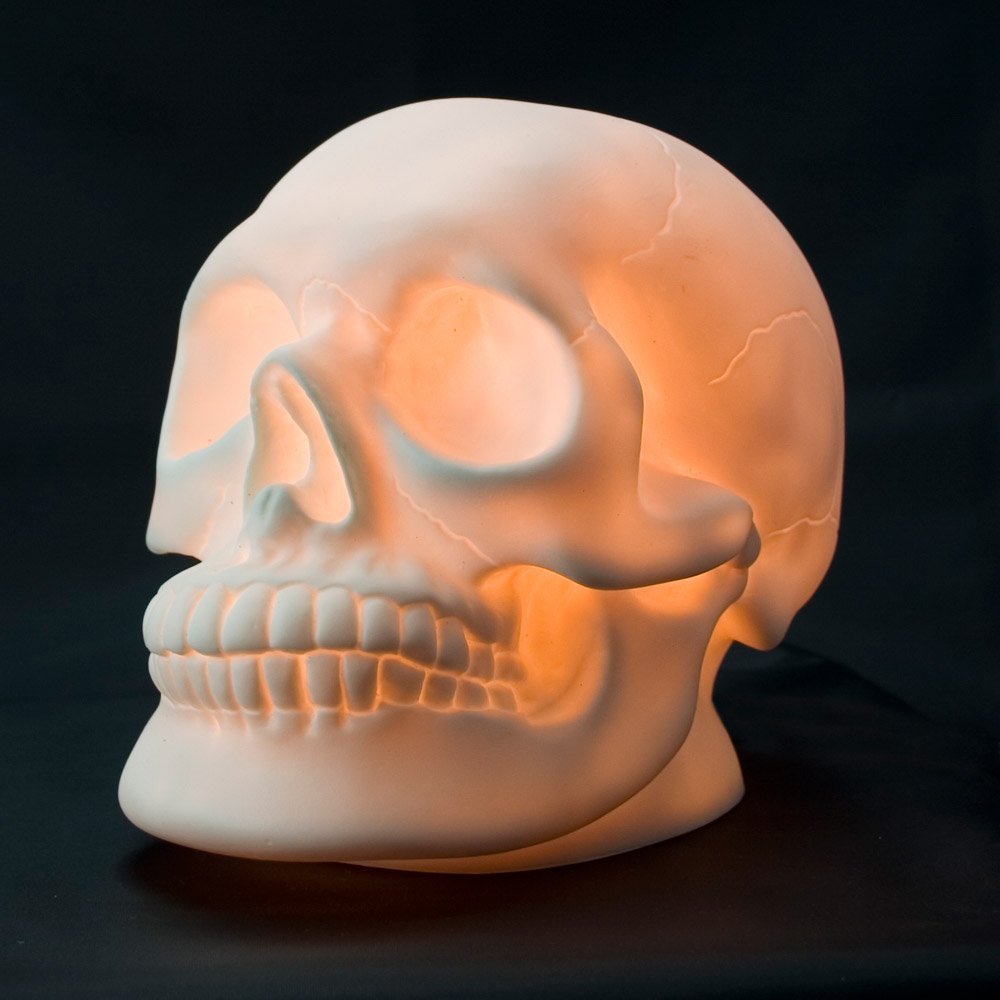Skull Lamp: Amazon.co.uk: Lighting