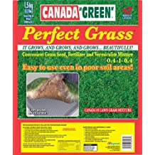 Canada Green Perfect Grass 3.3 lbs (1.5 Kg)