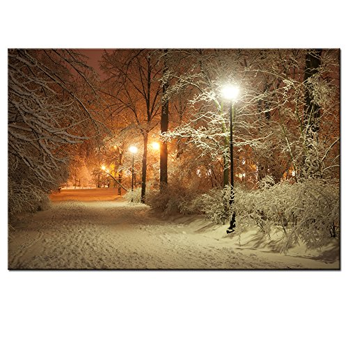 Sea Charm - Warm Winter Park,Alley in Park and Shining