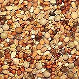 25kg Kampol K Taubenfutter für kleine Rassen und Kurzschnäbler