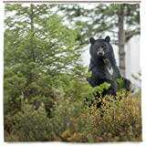 CdVeK9ca Black Bear In The Forest Shower Curtain Waterproof Polyester Bath Curtian With Hooks 60x72 Inch