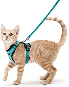 Rabbitgoo Cat Harness and Leash Set for Walking Escape Proof, Adjustable Small Vest Harnesses for Cats with 59 Inches Leash, Small Kitten Leash Harness with Reflective Strips and 1 Metal Leash Ring, Green, XS …