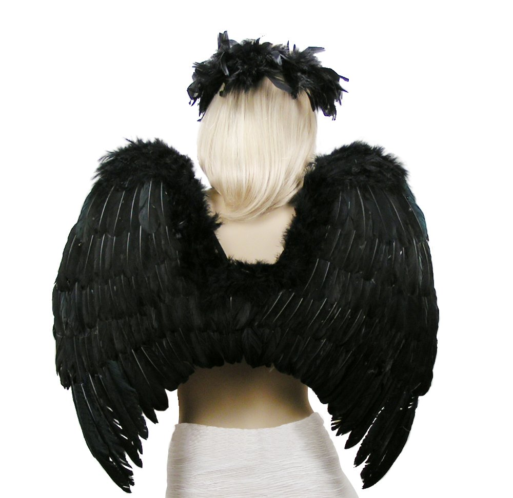 FashionWings (TM Black Fallen Angel Costume Feather Wings Halo Mask Set