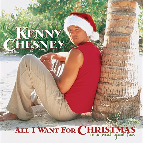 All I Want For Christmas Is A ...