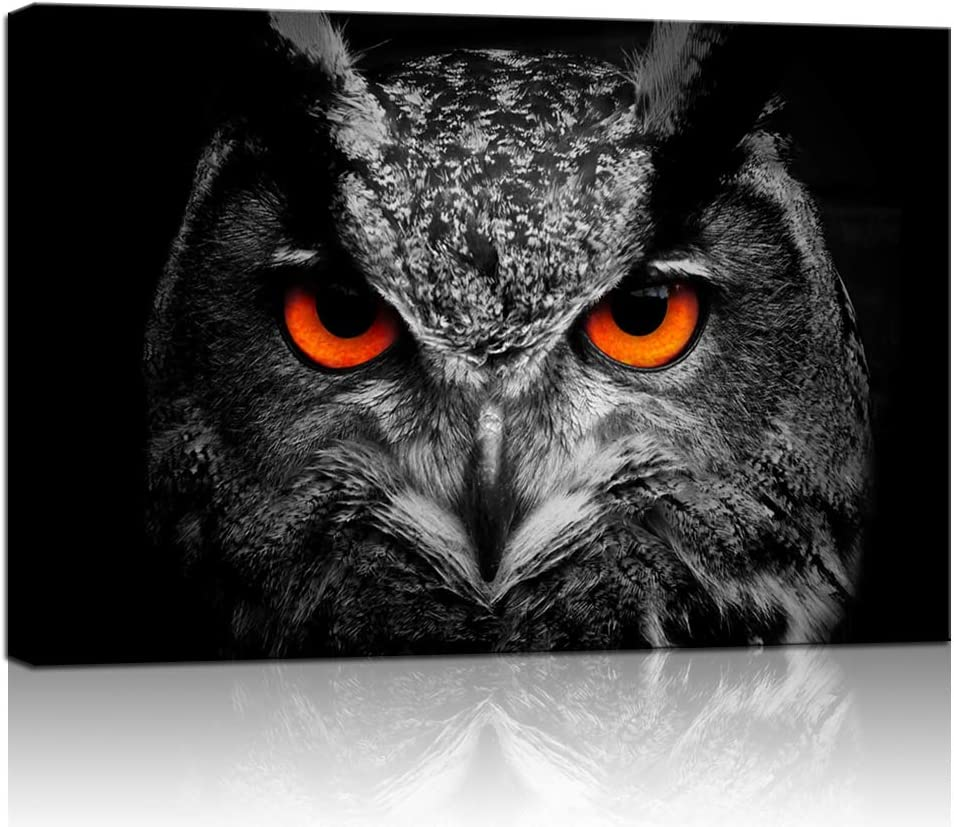 Biuteawal Animal Wall Art Black White Owl with Red Eyes Picture Poster Canvas Painting Halloween Decor Framed Artwork for Home Offic Ready to Hang