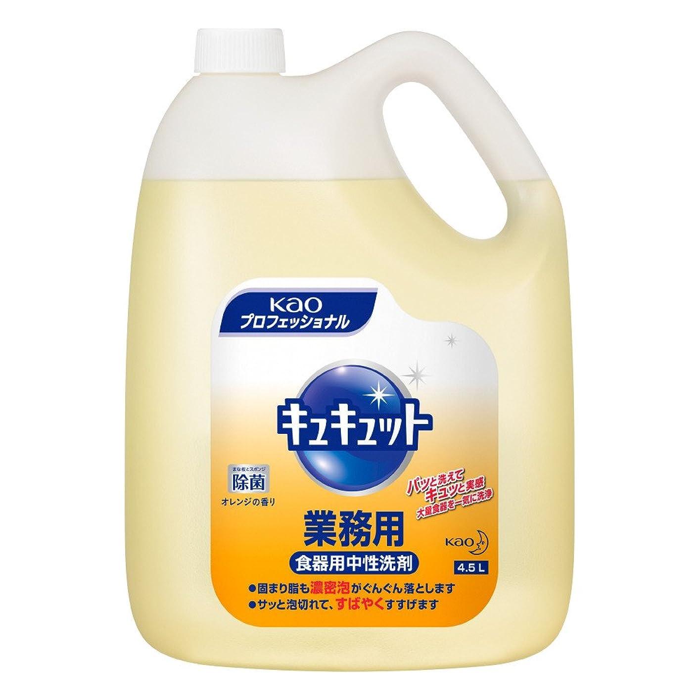 ブルゴーニュ一見閲覧する除菌ジョイ コンパクト 食器洗剤 スパークリングレモンの香り 詰め替え 超特大増量 1120 mL