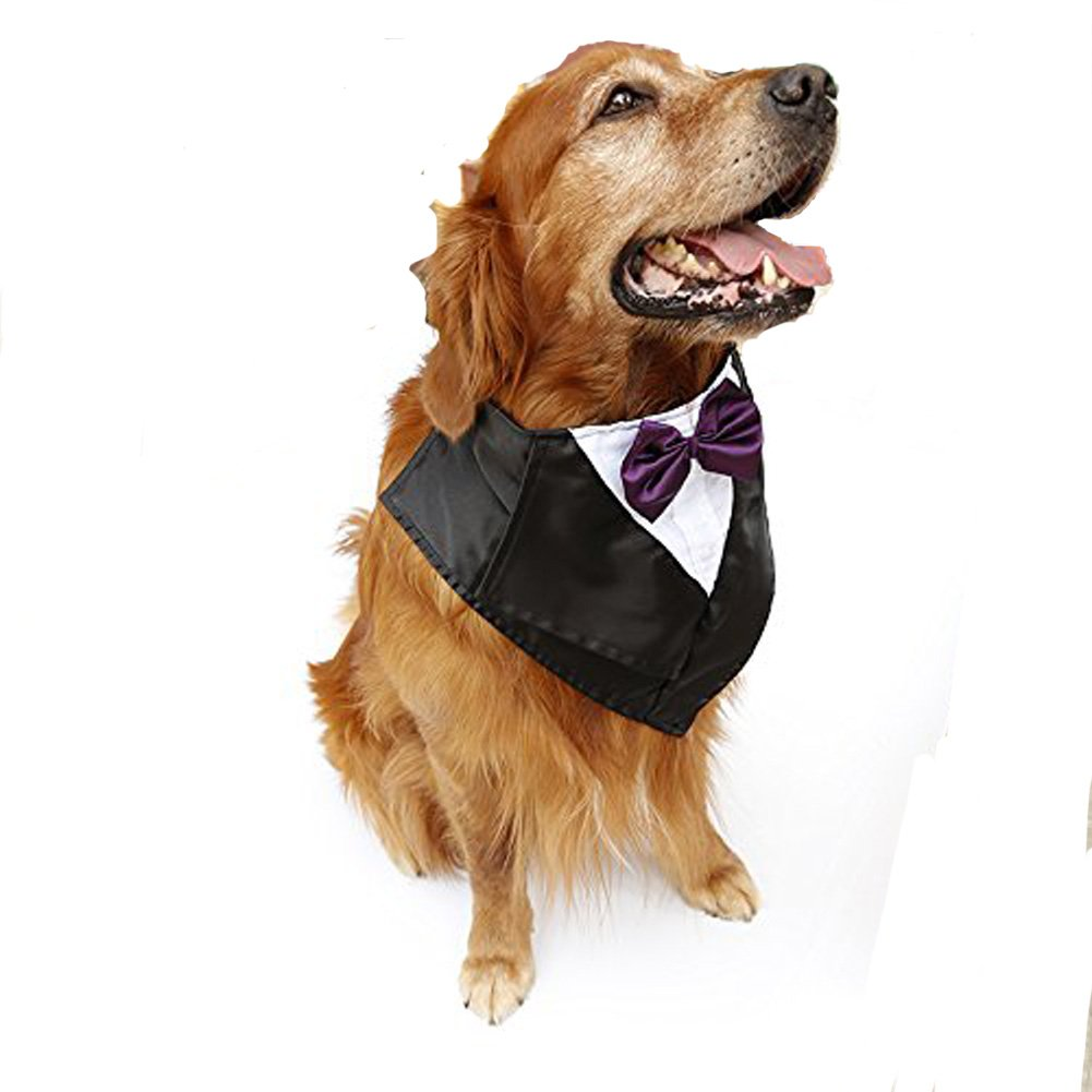 PetFavorites Large Dog Tuxedo Costume - Cat Wedding Bandana Collar with Bow Tie for Halloween - Golden Retriever Sheepdog Clothes Outlets Accessories, Adjustable & Handmade (Purple)