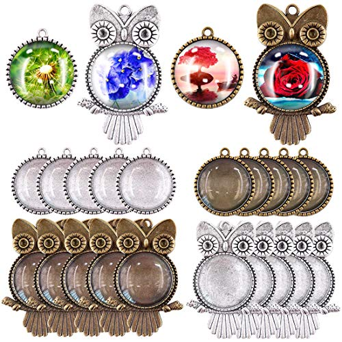 Swpeet 48Pcs 2 Shapes Pendant Trays Kit, 12Pcs Owl Pendant Trays and 12Pcs Round Tree Bezel Pendant Trays with 24Pcs Glass Cabochon Clear Dome for Photo Pendant Craft Jewelry Making