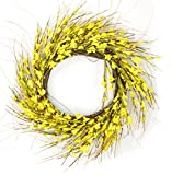 Cheap Red Co. 19-Inch Yellow Jasmine Wreath – All Year Natural Dried Floral Decor