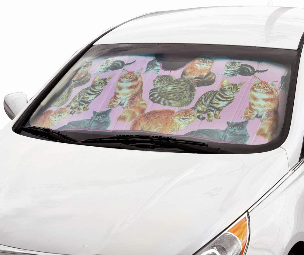Front Windshield Sun Shade-Accordion Folding Auto Sunshade for Car Truck SUV-Blocks UV Rays Sun Visor Protector-Keep Your Vehicle Cool BDK Texas Flag 58 x 27 Inch