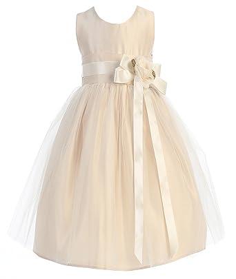 5eba3d0c2 Amazon.com: Sweet Kids Big Girls' Vintage Satin and Tulle Dress 10 ...