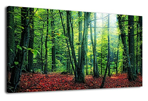 ure Green Woods Nature Painting Panoramic Canvas Artwork Contemporary Foliage Forest Trees Red Fallen Leaves Wilderness Landscape for Kitchen Office Home Decoration 20