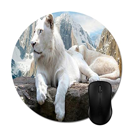 04fda532b4b3b Amazon.com : Smity 106 Mouse Pads White Lion Cute Animals Mouse Mat ...