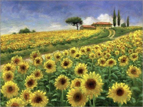 Poster 120 x 90 cm  Sonnenblumen von Jay Hurst MGL Licensing - hochwertiger Kunstdruck, Kunstposter