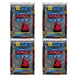 Pennington Select Black Oil Sunflower Seed Wild Bird Feed, 40 lbs - 4 Packs