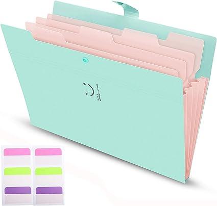 Carpeta Clasificadora Archivador A4 Organizador Documentos Plastico 5 Bolsillos de gran Capacidad Extensible Portátil Organizador Documentos para Herramientas Escolares y de Oficina: Amazon.es: Oficina y papelería