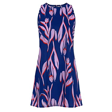 b4f85a258b Amazon.com: Cliramer Women's 2019 Summer Sleeveless Loose Swing Casual T  Shirt V Neck Sexy Suspender Beach Mini Dress with Pocket Blue: Electronics