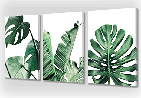 Amazon Com Living Room Wall Art Green Leaf Simple Life Painting Bedroom Wall Decoration Monstera Plant 3 Pieces Canvas Art Painting Modern Watercolor Works Ready To Decorate Home Decoration Office Decoration Posters