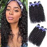 Malaysian Water Wave Bundles Wet and Wavy Hair 3 Bundles 100% Unprocessed Virgin Human Hair Extensions 100g per Bundle Double Wefts Natural Black (16 18 20)