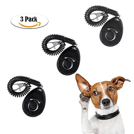 AINOLWAY - Púa de entrenamiento para perro, con instrucciones de entrenamiento, 3 piezas,