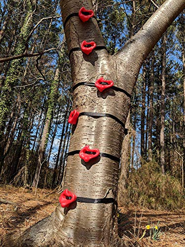 Tuahoo Gym Backyard Ninja Tree Climbers Climbing Holds for Kids and Adults Ninja Obstacle Course Slackline Training Equipment