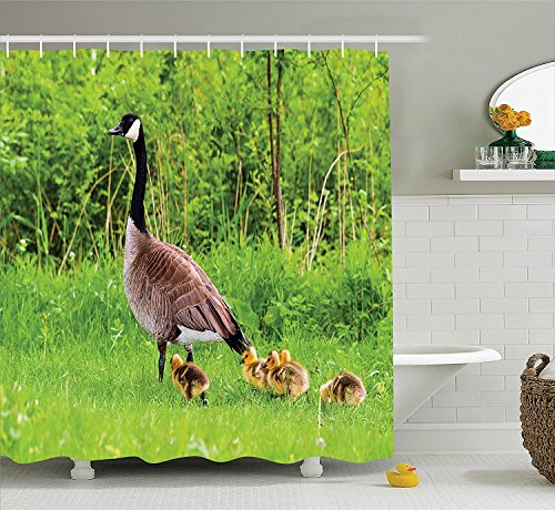 [Geese Decor Collection Canadian Goose and Chicks in Grass Spring Summer Wild Nature Scenic Picture Polyester Fabric Bathroom Shower Curtain Set with Hooks Green] (Chick Magnet Costume Walmart)