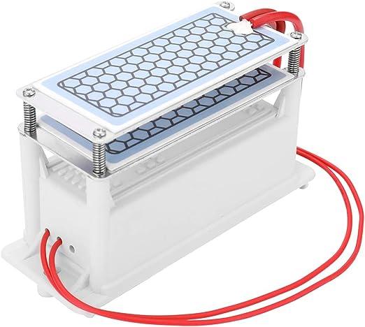 HONGLONG Dual Integrado Placa de cerámica, 220V 10 g/h generador de ozono portátil de cerámica para el generador de ozono, purificadores de Aire: Amazon.es: Hogar