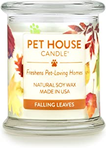 One Fur All All-100% Natural Soy Wax Candle, 20 Fragrances-Pet Odor Eliminator, Up to 60 Hours Burn Time, Pack of 1, Falling Leaves