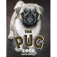 The Pug 2019 Calendar
