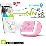 Traceur GPS Kippy VitaS pour animaux de compagnie | GPS et moniteur d'activité pour chiens et chats pesant 5kg ou plus | Nécessite un abonnement au service de données (vendu séparément)