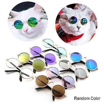 Leegoal Adorable Gafas De Sol para Gatos | Perros Pequeños | Accesorios de Mascotas Protección Solar,Diseño de Moda (Colores Aleatorios): Amazon.es: ...