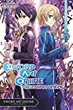 Sword Art Online 14 (light novel): Alicization Uniting