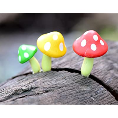 LTDD 3Pcs Fairy Garden Mini Mushroom Ornaments for Bonsai Landscape Decoration: Home & Kitchen