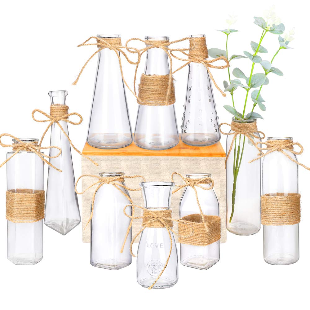 Nilos Glass Vases Set of 10, Clear Glass Flower Vase with Rope Design and Differing Unique Shapes for Home Decoration by Nilos